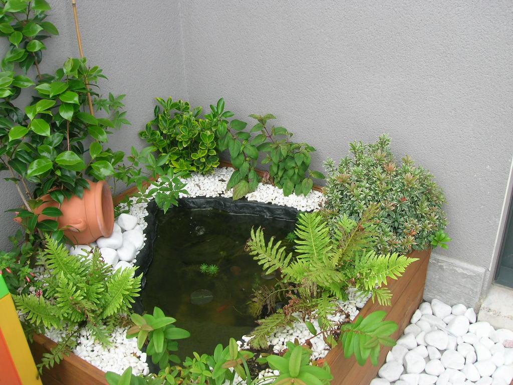 Elecci n de plantas para miniestanque for Como oxigenar el agua de un estanque sin electricidad