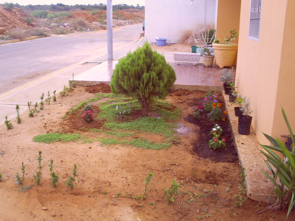 Jard n venezolano quiero hacer en este peque o espacio - Como disenar un jardin exterior ...