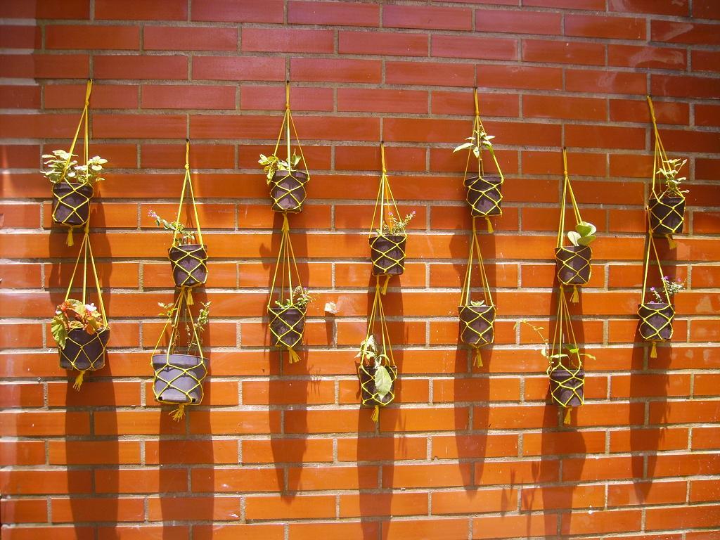 Macetas en la pared experiencias y m todos efectivos para colgarlas - Macetas en la pared ...