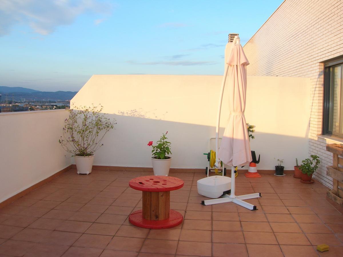 Plantas para terraza con sol - Plantas terraza mucho sol ...