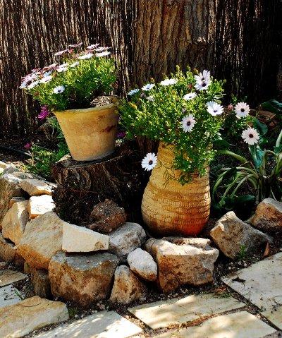 Ayuda para dise ar jardin en m xico - Disenar un jardin rustico ...