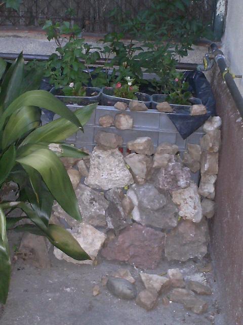 Jardineras baratas qu recipientes usar p gina 2 for Jardineras de hormigon baratas