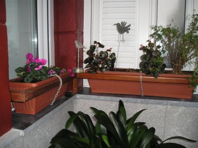 C mo decorar porche sin sol con flores fotos - Como decorar un porche ...