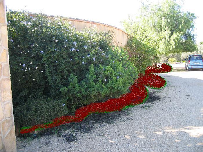 Renovar un trocito de mi jard n for Separador piedras jardin