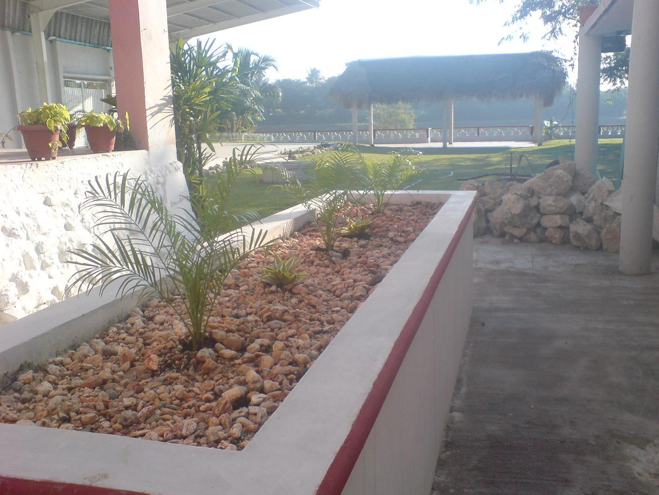 C mo decorar con plantas jardinera de concreto fotos for Jardineras con bloques de hormigon
