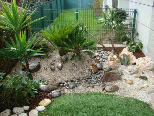 Jardincillo de 10x3 m en a coru a ayuda para distribuir - Jardines con cactus y piedras ...