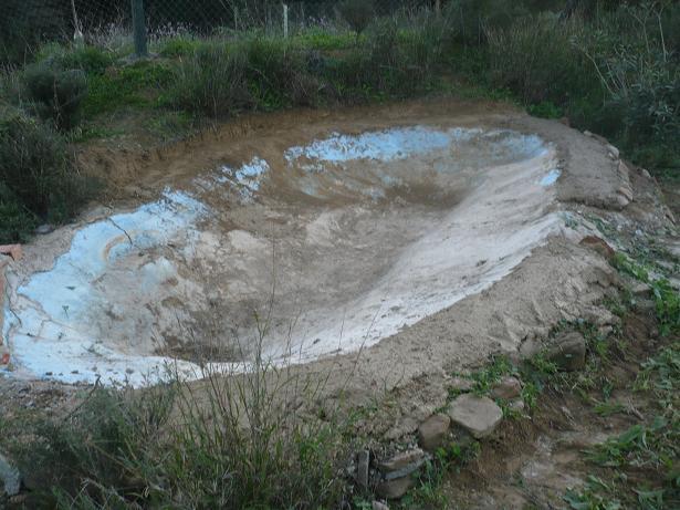 Reparar estanque de hormig n que tiene grietas con alg n for Estanque de hormigon
