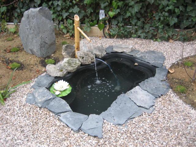 Ver tema peque o estanque el pila for Estanque pequeno