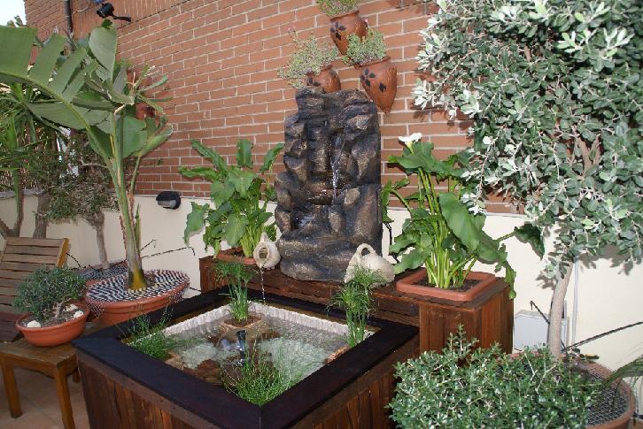 Hacer estanque en una terraza for Como hacer un estanque en casa